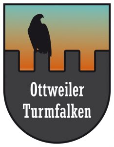 F_Logo_Turmfalken_orange